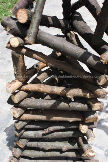www.shirshakbaniya.wordpress.com_2243 copy